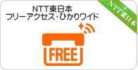 NTT東日本・フリーアクセス、フリーアクセス・ひかりワイド